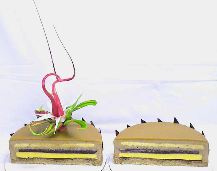 chocolate-pear-entremet-cut