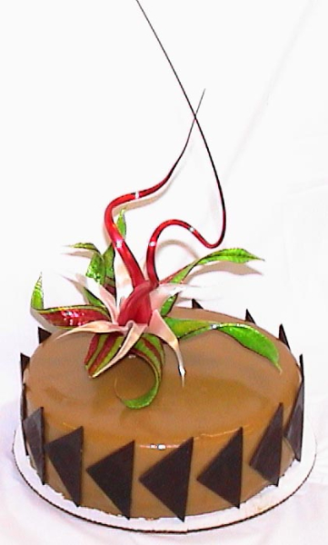 chocolate-pear-entremet